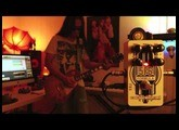 Formula 5F6 by Catalinbread: 8 guitars, 1 bass