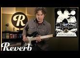 Catalinbread NiCompressor | Reverb Tone Report