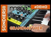 MOOG GRANDMOTHER PATCHES : Juste du son / just sound / demo