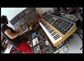 Moog One, Grandmother, System 55 and Digitakt