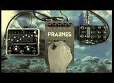 "Glou-Glou ""Pralines"" + Chase Bliss Audio ""Thermae"" + EHX ""8 Step Program"""