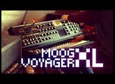 Moog Voyager XL: Sounds from Scratch (No Talking)