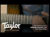 The Taylor 317e | Grand Pacific Dreadnought