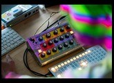 Moog Sirin | Analog Messenger of Joy