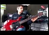 Test : guitare PRS S2 Standard 22