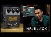 Mr Black Vintage Ensemble Stereo Chorus/Vibrato