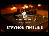 Pedals4Synths -  Strymon Timeline on a Moog Grandmother