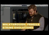 Walkthrough: Fragile String Evolutions
