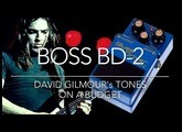 David Gilmour on a Budget - BOSS BD2