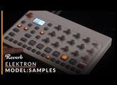 Elektron Model:Samples First Listen | Reverb Demo