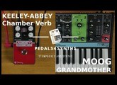 Pedals4Synths - KEELEY - Abbey Chamber Verb W/MOOG Grandmother