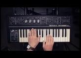 Roland SH-2 | Black Box Skank