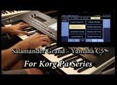 Free Salamander Grand (Yamaha C5) - Korg Pa series (V 5.1)