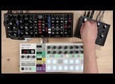 Audiothingies Doctor A with... Arturia BSP + Behringer Model D