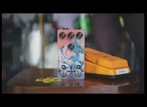 Walrus Audio Pedal Play: Kangra Filter Fuzz - Filter w/Expression