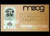 Pedals4Synths - J RAD IMMORTAL ECHO W/ Moog Grandmother