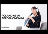 Roland AE-01 Aerophone mini Digital Wind Instrument