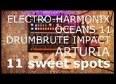 P4S   11 Sweet Spots with the EHX Oceans11 reverberation and a DrumBrute Impact