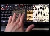 Make Noise René - Centre de contrôle pour patch chaotique