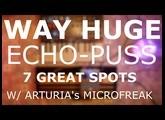 WAY HUGE Echo Puss - 7 cool spots W/ Arturia's Microfreak