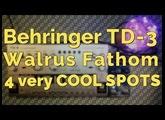 Behringer TD 3 + Walrus Audio Fathom 4 very nice spots