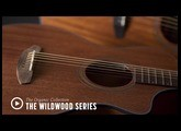 The Breedlove Organic Collection - Wildwood Series