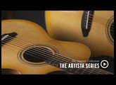 Breedlove Organic Collection - The Artista Series