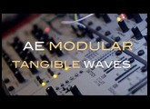like sound AE Modular -Tangible Waves VCO with filter WASP vs filter NYLE (Steiner type) sound demo