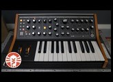 Moog Subsequent 25 | Synthesizer | Vintage King