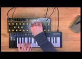 Behringer WASP Deluxe Sound Demo (no talking)