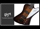 週刊ギブソンVol.51〜Gibson USA Thunderbird Bass 2015