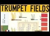 LABS Trumpet Fields