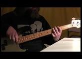 """Dub Vendetta"" - ZENZILE Bass Cover"