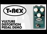T-Rex - Vulture Fat Distortion Demo at GAK