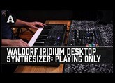 Waldorf Iridium Desktop Synthesizer - The Mighty Quantum Synth Engine In a NEW Compact Form!