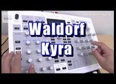 Waldorf Kyra Demo & Review