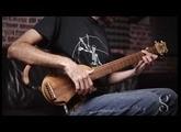 guitare de voyage electroacoustique tourbus acoustic