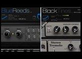 BlueReeds vs. Black Tines