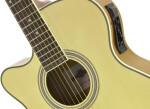 Guitares électro-acoustiques pour gauchers