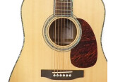 Maya (guitar) F300