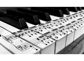 Harmony Basics - Part 24