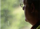 Reportage sur un bûcheron spécialisé dans la lutherie