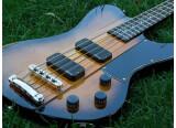 Test de la Schecter Ultra Bass