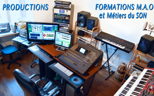 FORMATIONS SON et MAO
