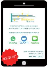 Cours de Musique en VIDEO LIVE Association Les Ambiances Musicales