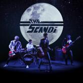 Guitare-voix pour The Scandi