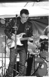 Guitariste/ chanteur pro .