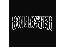 Recherche Batteur motivé pour DOLLOSTER