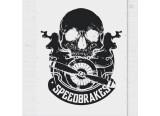 Speedbrakes recherche un chanteur ou une chanteuse