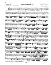 Violoncelliste et Contrebassiste, diplômée d'études musicales en Solfège, propose des cours particuliers de Solfège